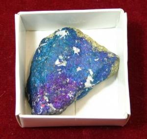 <P>Bornite (displayed in 5cm x 5cm box)</P>